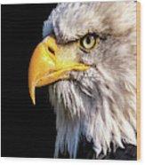 Profile Of Bald Eagle Wood Print