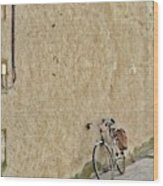 Provencial Bike Wood Print