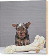 Puppy With Oversized Bone Wood Print