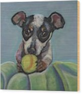 Puppy With Tennis Ball Wood Print
