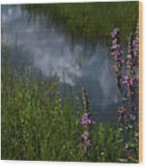 Purple Daydream Wood Print