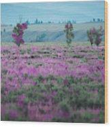 Purple Grain Wood Print