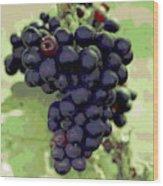 Purple Grape Bunches 19 Wood Print