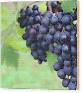 Purple Grape Bunches 21 Wood Print