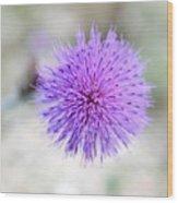 Purple Peace Wood Print