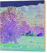 Purple Tree Reverie Wood Print
