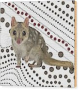 Q Is For Quoll Wood Print