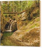 Quiet Falls Wood Print