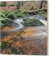 Rapids On Jedlova Brook, Jizera Mountains,  Czech Republic Wood Print