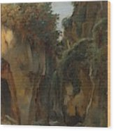 Ravine At Sorrento  Wood Print
