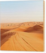 Red Sand Arabian Desert Near Dubai Wood Print