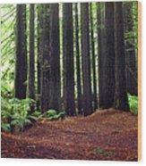 Redwoods 1 Wood Print