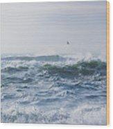 Reynisfjara Seagull Over Crashing Waves Wood Print