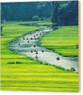 Rice Field And River, Ninhbinh, Vietnam Wood Print