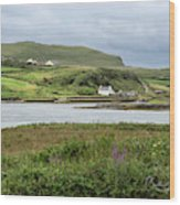 Ring Of Kerry Wood Print