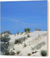 Rippled Sand Dunes In White Sands National Monument, New Mexico - Newm500 00106 Wood Print