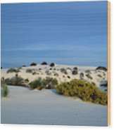 Rippled Sand Dunes In White Sands National Monument, New Mexico - Newm500 00114 Wood Print