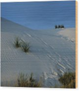 Rippled Sand Dunes In White Sands National Monument, New Mexico - Newm500 00118 Wood Print