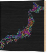River Basins Of Japan In Rainbow Colours Wood Print