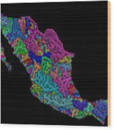 River Basins Of Mexico In Rainbow Colours Wood Print