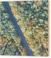 Road Through Colorful Autumn Forest Wood Print