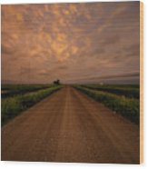 Road To Huron  Wood Print