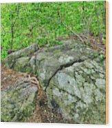 Rock On Green's Hill Wood Print