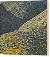 Rolling Hillsides In California - Vertical Wood Print