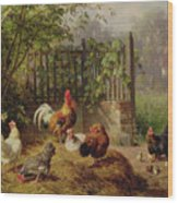 Rooster With Hens And Chicks Wood Print