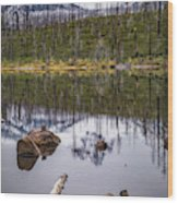 Round Lake Reflection Wood Print