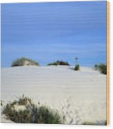 Rrippled Sand Dunes In White Sands National Monument, New Mexico - Newm500 00111 Wood Print
