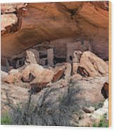 Ruins At Butler On The San Juan River  Wood Print