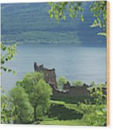 ruins of castle Urquhart on loch Ness Wood Print