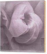 Sacred Rose Wood Print