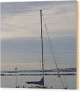 Sailboat In The Bay Area Wood Print