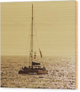Sailing In The Sunlight Wood Print