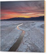 Salt Creek Flats Wood Print