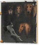 Salukis No 03 Wood Print