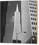 San Francisco - Transamerica Pyramid Bw Wood Print