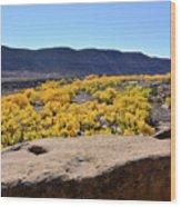 Sandstone Above Golden River Desert Landscape Wood Print