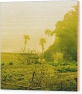Sapa Landscape, Vietnam Wood Print