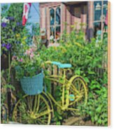 Scenic Garden And Antiques Store Wood Print
