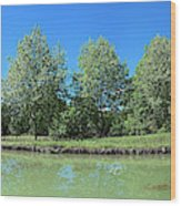 Scenic View Of Burgundy Canal Wood Print