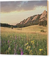 Scenic View Of Meadow And Mountains Wood Print