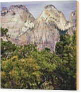 Scenic Zion - Mount Carmel Highway Drive 4 Wood Print