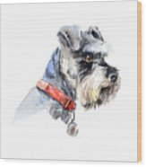 Schnauzer. Portrait Of A Dog. Set With Wood Print