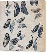 Scrapbook Butterflies Wood Print