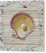 Sea Shell Beach House Rustic Chic Decor IIi Wood Print