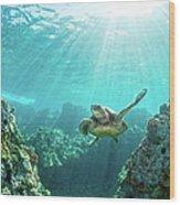 Sea Turtle Coral Reef Wood Print