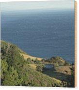 Sea View Pond Wood Print